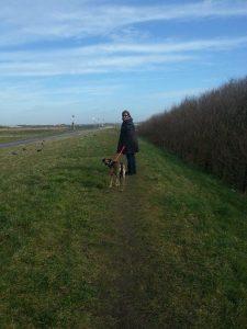 wandelen in NL