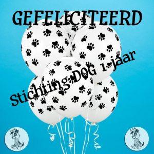 verjaardag DOG 3